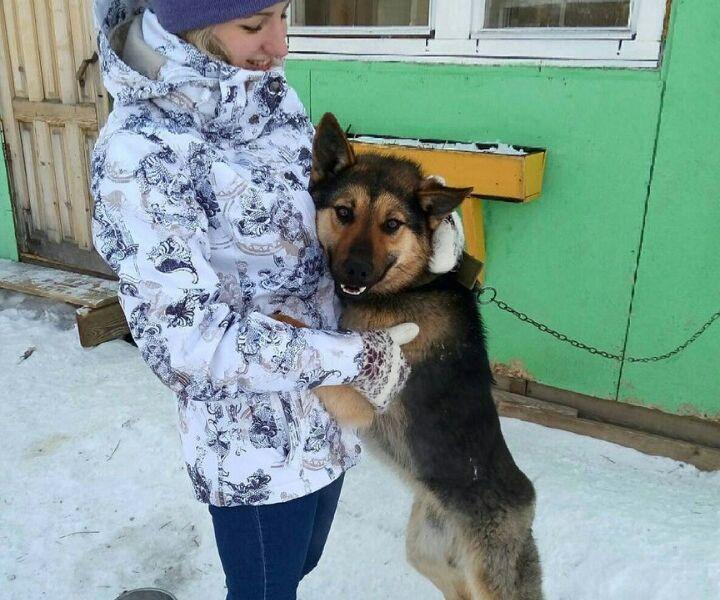 Отдадим собаку в добрые и заботливые руки!
